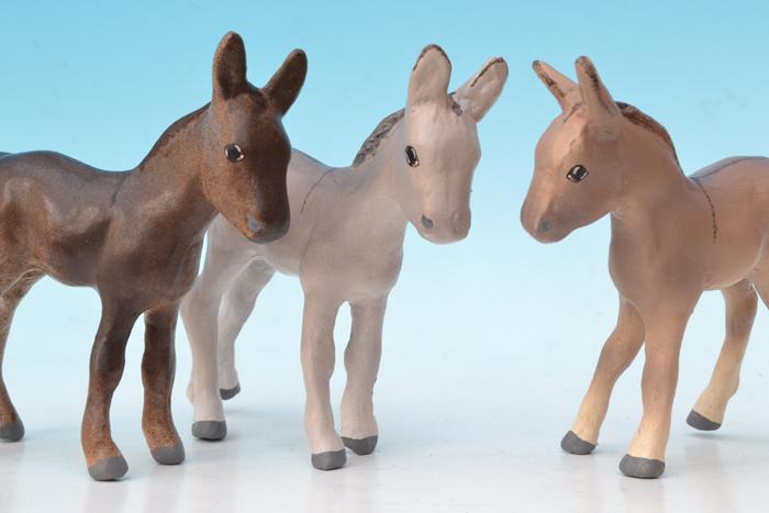 donkey 014